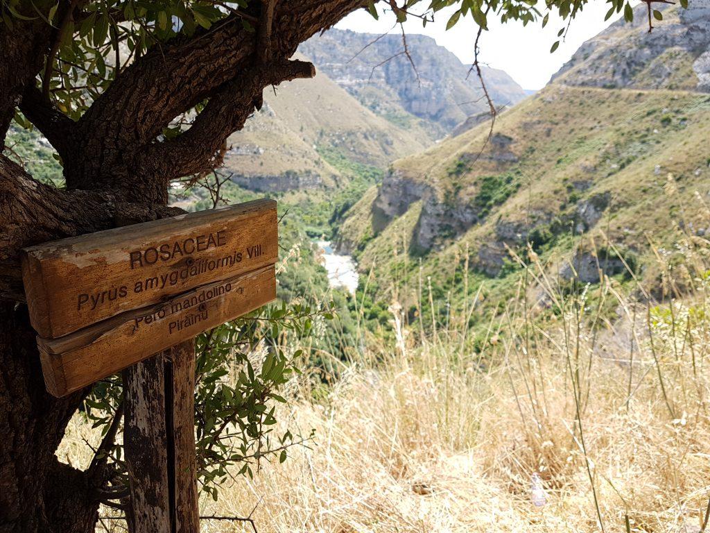 Cavagrande - Laghi di Avola