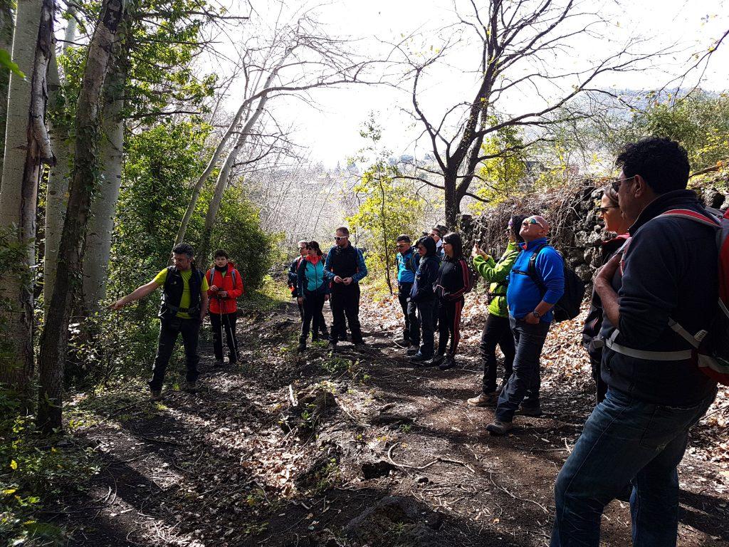 Begin van de wandling naar de Monte Ilice krater in het bos