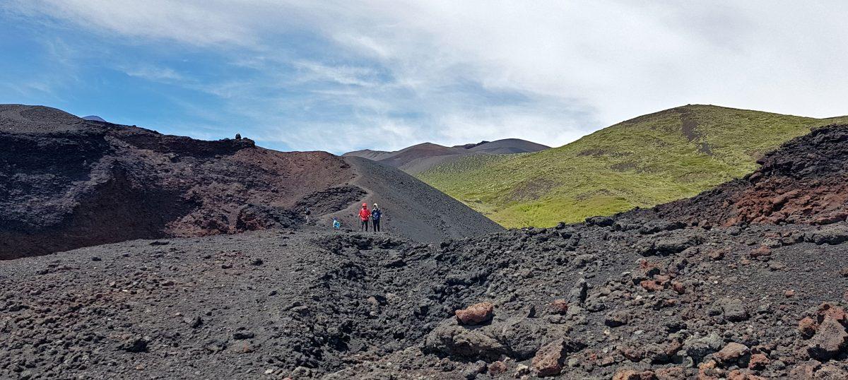 contrasto lava vegetazione eruzione 2002