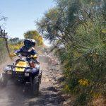 ginestra dell etna quad escursione