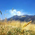 Valle del Bove - Etna