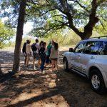 jeep tour etna grotta corruccio